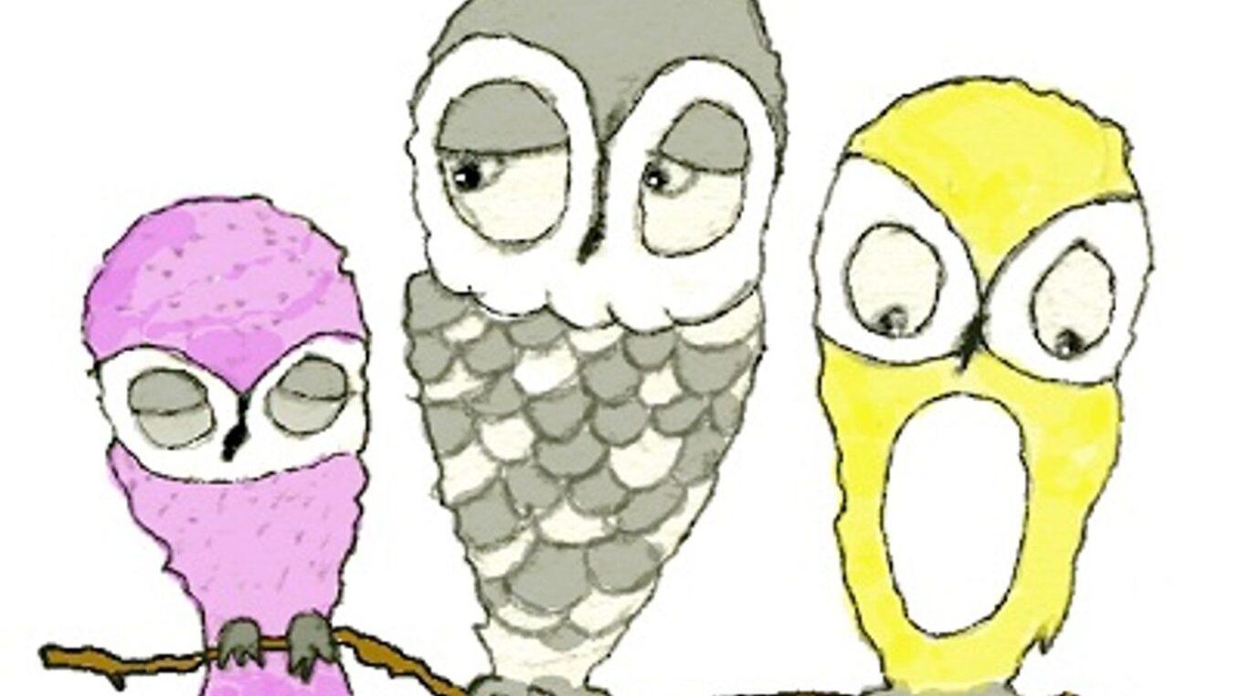 piirros pöllöt